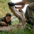 "Take a look at ""Annihilation"", the new film from ""Ex Machina""'s director"
