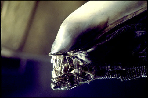 "Ridley Scott is working on the next ""Alien"" movie... without Xenomorphs?"