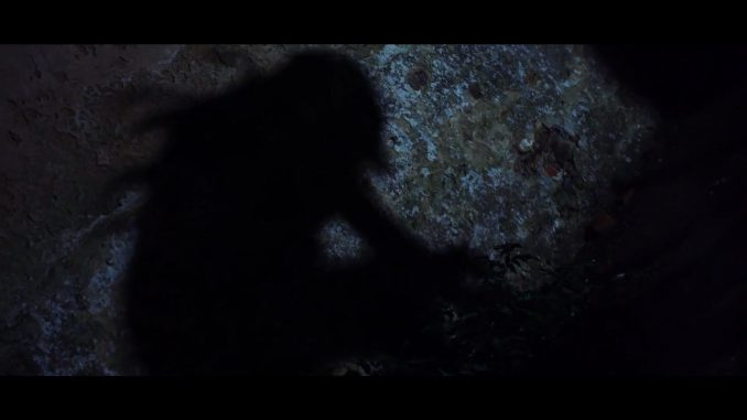 """Deadly creepy forest creatures in """"A Dark Path"""""""