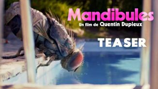 """Rubber""'s director Quentin Dupieux is back with ""Mandibules"""
